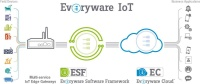 Everyware IoT Solution
